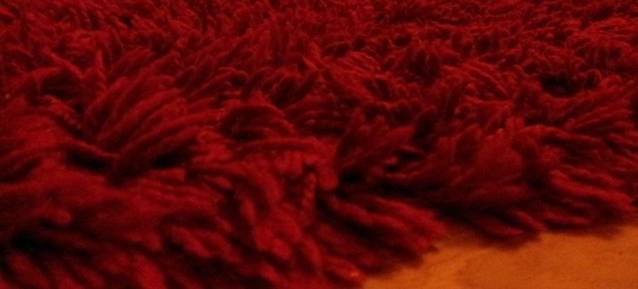 Limpieza de alfombras de lana con host limpieza de - Limpieza de alfombras de lana ...