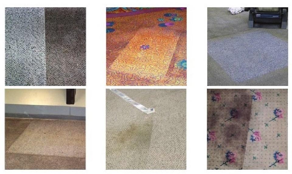 Una máquina de limpieza para TODO: Host, limpieza de suelos, alfombras y moquetas