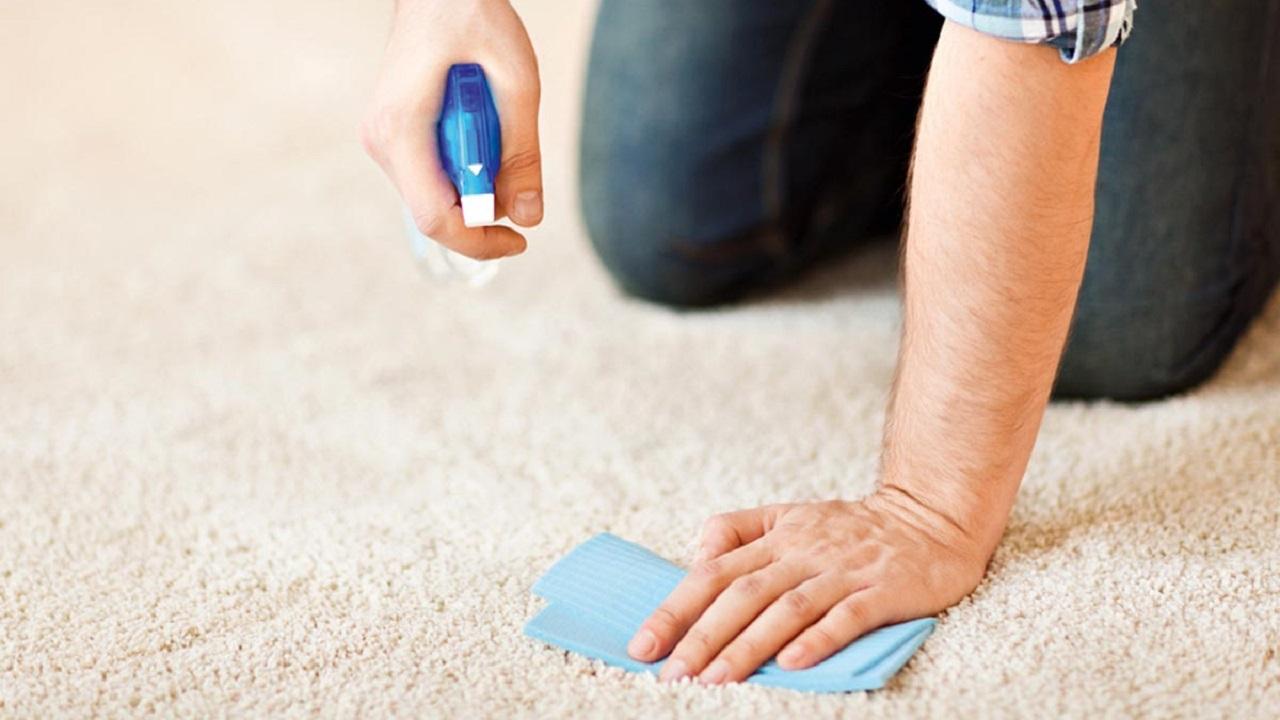 6 mitos sobre la limpieza de alfombras y moquetas