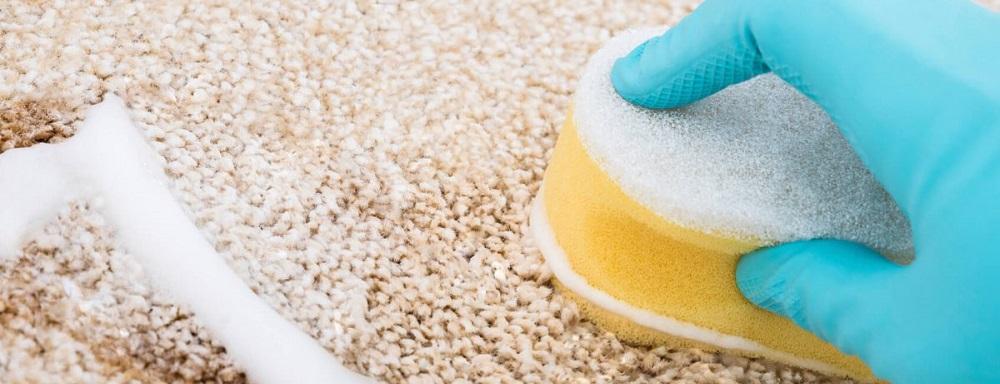 mitos sobre la limpieza de alfombras y moquetas
