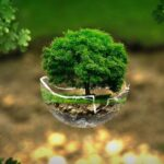 Sistema de limpieza ecológico