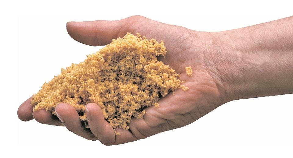 26 ventajas de la limpieza en seco de alfombras y moquetas HOST DRy