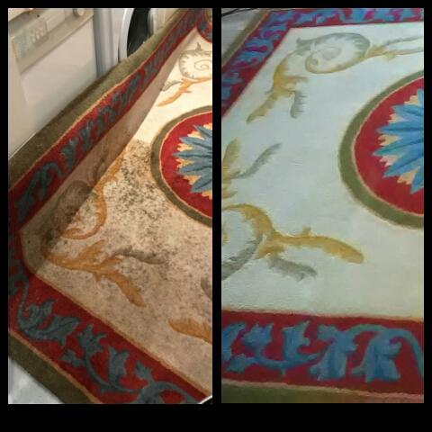 Moho en alfombras y moquetas: identificación, prevención y eliminación